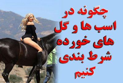 مسابقات اسب سواری چگونه در اسب ها و تازی خورده شرط بندی کنیم